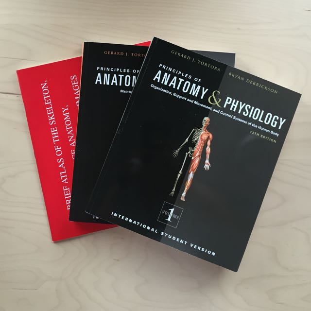 Fancy Principles Of Anatomy And Physiology 15th Edition Sketch ...