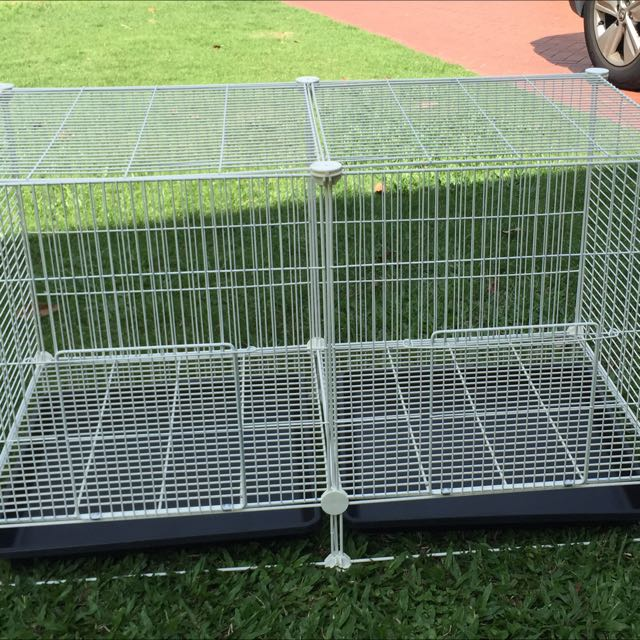 How to Set Up a Chinchillas Cage foto