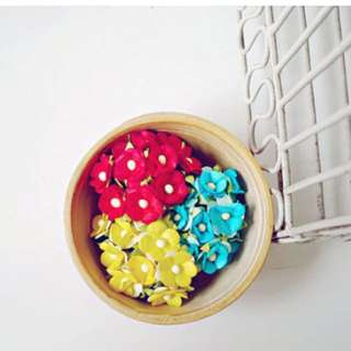 30 Mixed Red, yellow & blue Forget Me Not bright mulberry flowers / pack