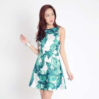 BNWT Lacepipe Palm Dress