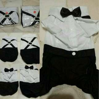 Brand New Dog Wedding Suit With Bow