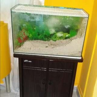 2ft X 1ft Cabinet Fish Tank for sale