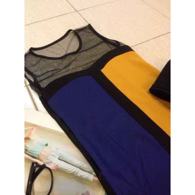 Dual Color Mesh Dress