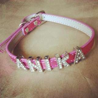 Personalised Pet Collar Metallic Looking For Dogs And Cats Small