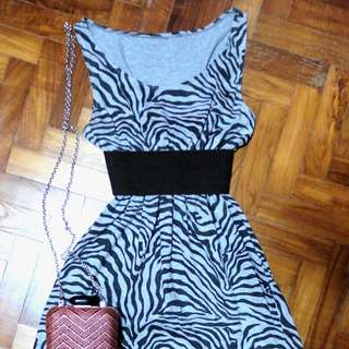 Grey Zebra Stripe Dress