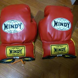 Brand New Red Windy Boxing Glove