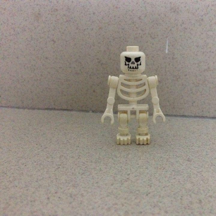 Lego Skeleton, Toys & Games on Carousell