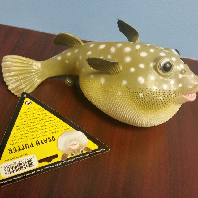 Reserved] Rubber Puffer Fish Squeaky Toy, Toys & Games on Carousell
