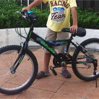 Preloved Bicycle
