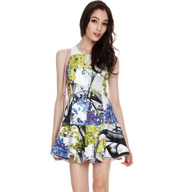 BNWT Floral Dropwaist Dress