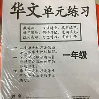 Primary 1 Chinese Test Papers