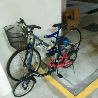 Mountain Bike And Foldable Bike