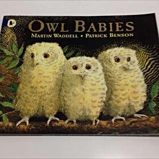 "Storybook - ""Owl Babies"""