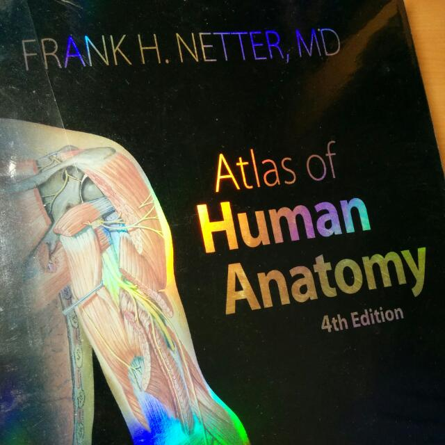 Netters Atlas Of Human Anatomy 4th Ed Books Stationery