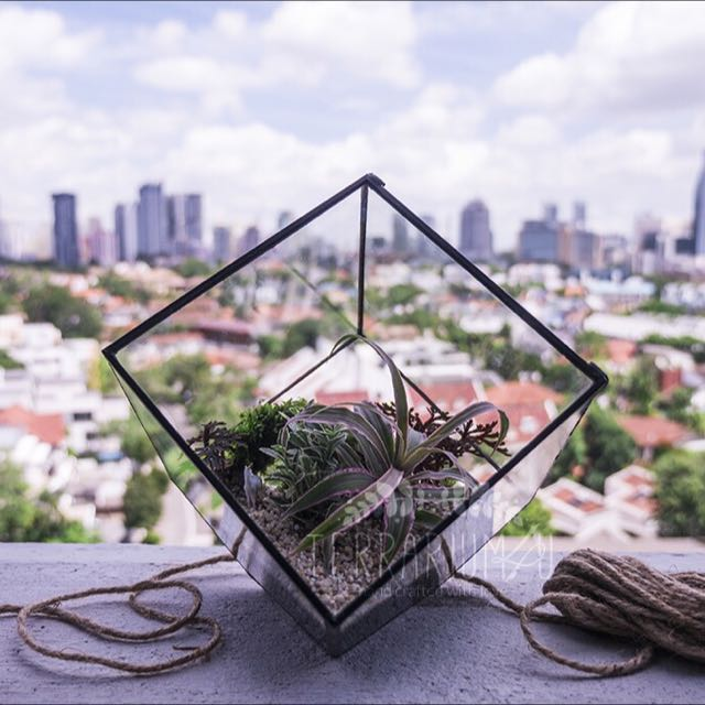 Geometric Stained Glass Terrarium Legendary Unicorn Design Craft