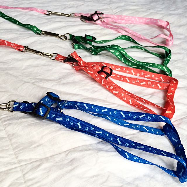 *On Sale* Pet Harness - Bones Print