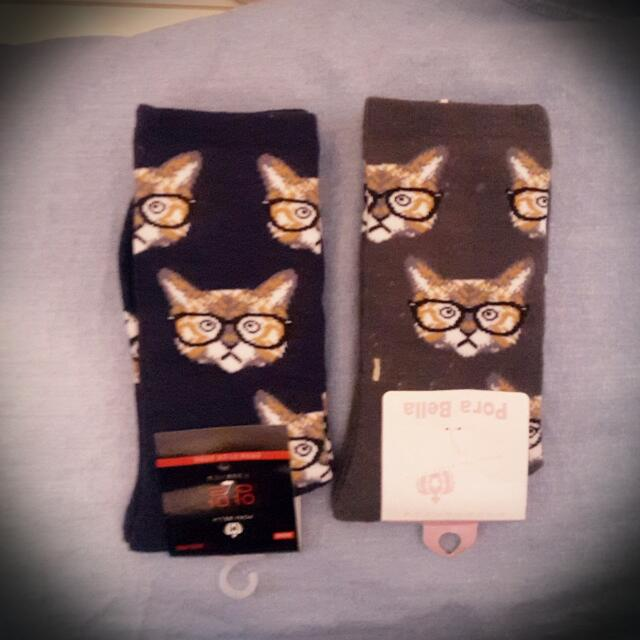 小貓socks