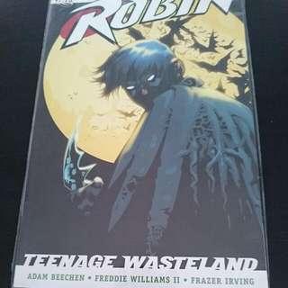 Robin Teenage Wasteland