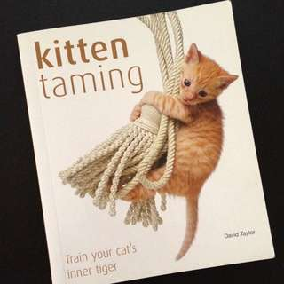 Kitten Taming - Train Your Cat's Inner Tiger