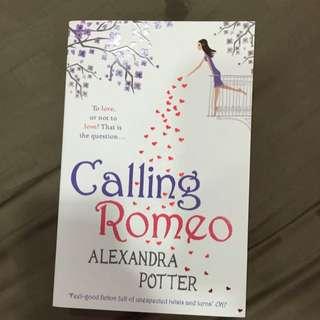 Romantic Novel(reduced)
