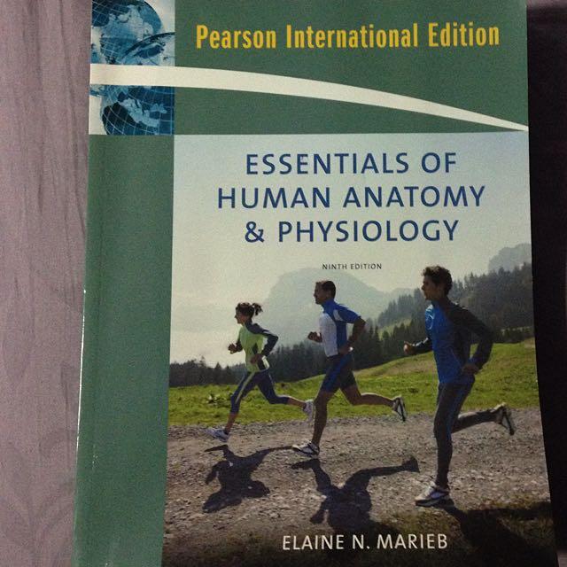 9th Edition Essentials of Human Anatomy /& Physiology