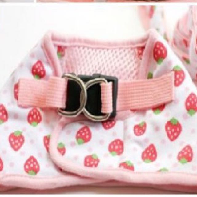 *On Sale* Pet Harness - Strawberry