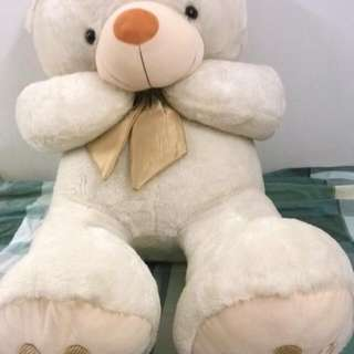 TOY the BEAR