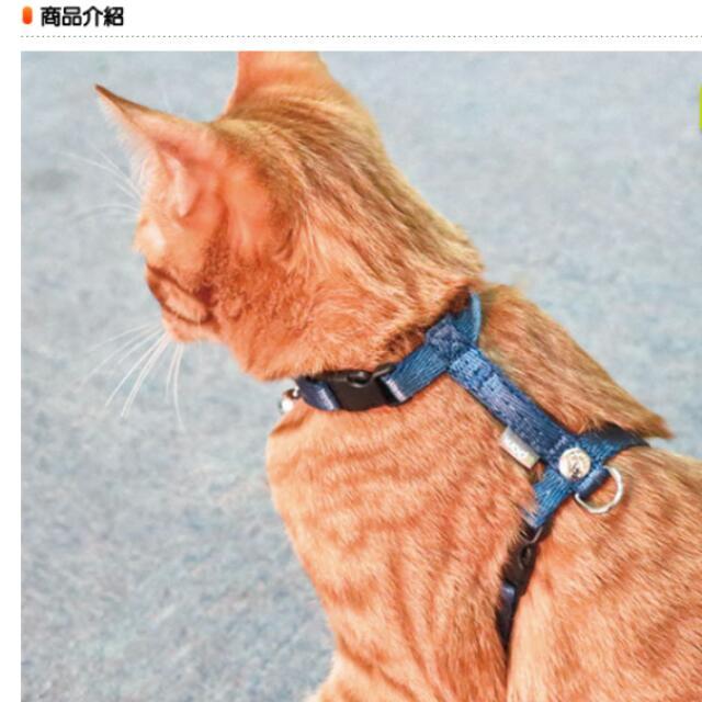 Bornier 帛尼爾 貓 狗 i 型 胸帶