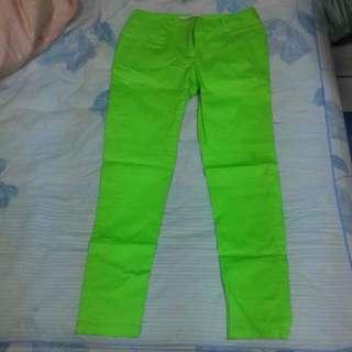 螢光綠長褲M號(全新,材質好!)