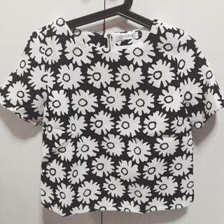 BN Daisy Top With Back Zip