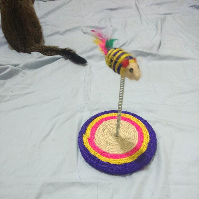 (待匯款)麻繩抓板 搖擺老鼠