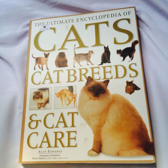Cats Breeds & Cat Care