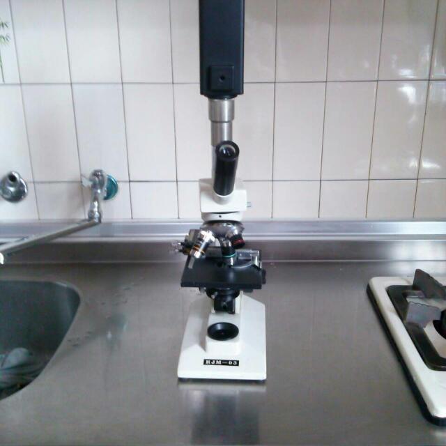 600倍顯微鏡可連接螢幕