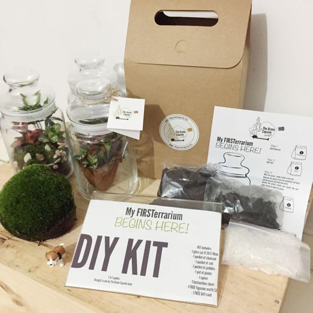 Diy Terrarium Kit Gardening On Carousell