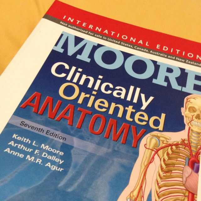 Moore Clinically Oriented Anatomy Mama Moore In Brand New
