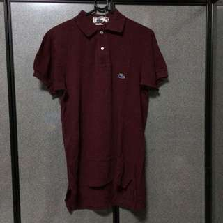 ed88aea2 lacoste polo tee | Vintage & Collectibles | Carousell Singapore