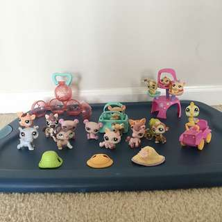 Littlest Pet shop Set (includes Everything Shown In The Photo)