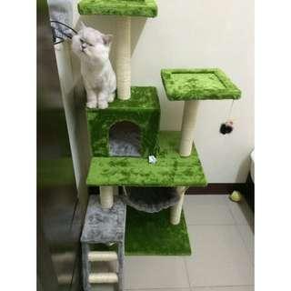 雙色貓跳台 貓窩 貓吊床 草綠+銀灰 九成新