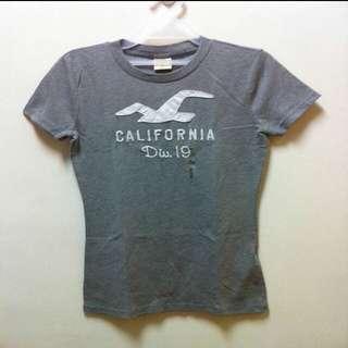 Hollister T恤 3款 真品