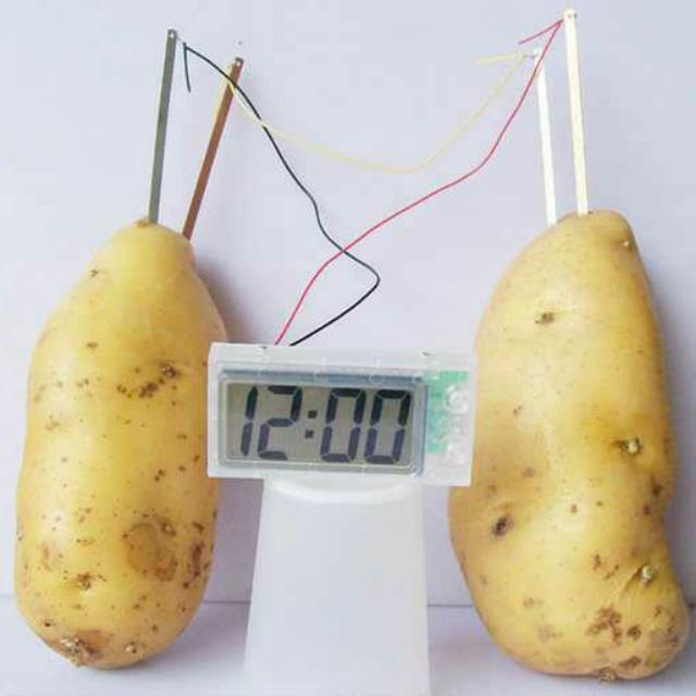 potato battery essay Find potato lesson plans and teaching resources from osmosis potato experiment worksheets to ireland potato famine videos, quickly find.