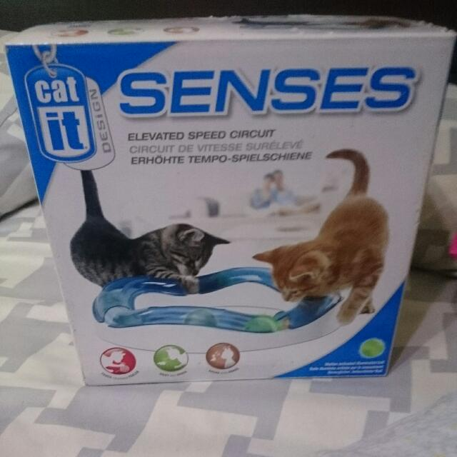 Catit Senses Speed Circuit Cat Toy Pet Supplies On Carousell