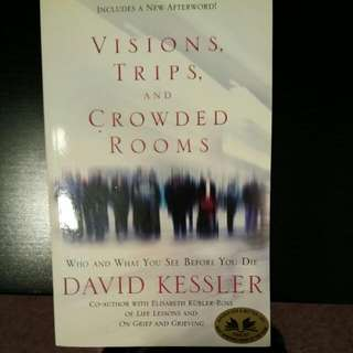 Visions, Trips, And Crowded Rooms By David Kessler
