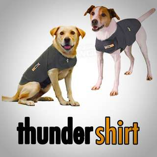 Thundershirt - Solution for Dogs/Cats Anxiety