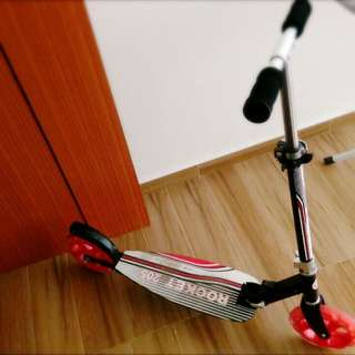 Kick Scooter ( Adult)