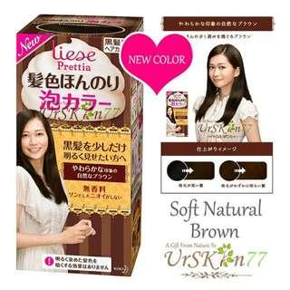 Liese Prettia Bubble Hair Color #Soft Natural Brown