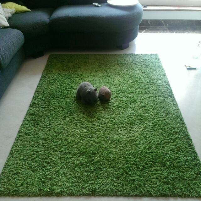 Ikea Hampen Green High Pile Rug, Furniture On Carousell