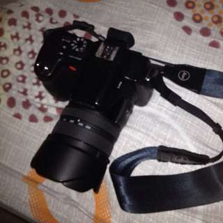 Leica V Lux 1