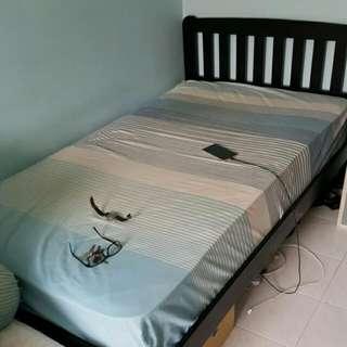Bed Frame (Black )