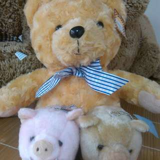 【保留】全新熊+兩隻山豬