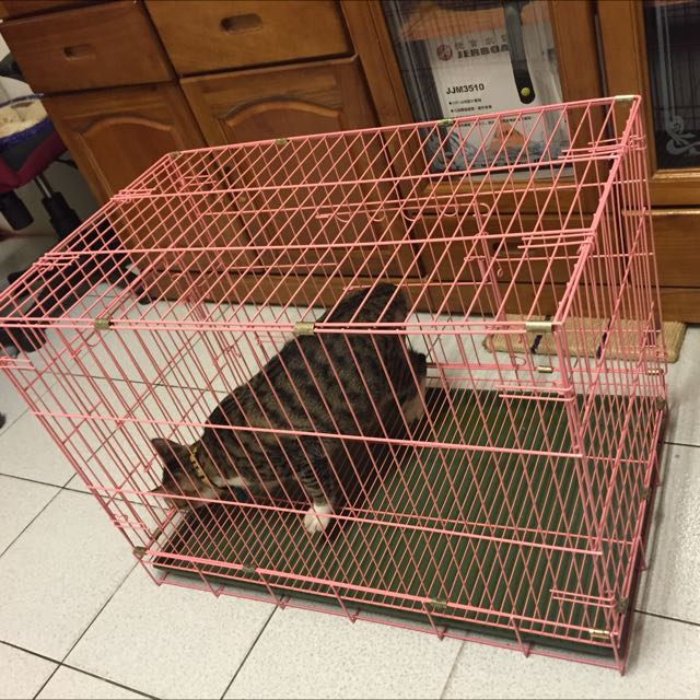 寵物籠 $900